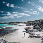 samphire rottnest beach